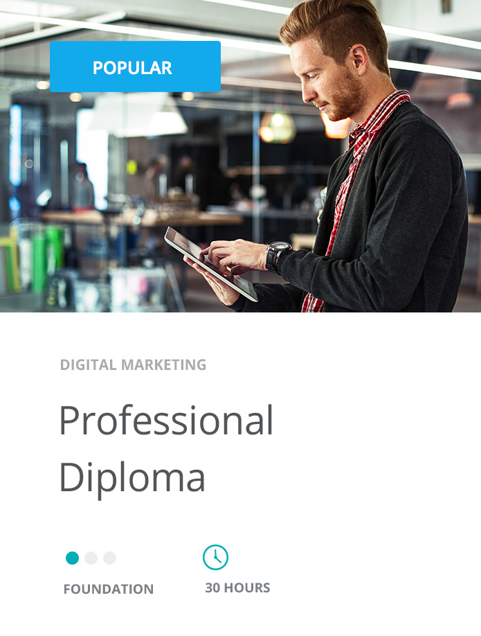 Professional Diploma in Digital Marketing | Digital Marketing Course
